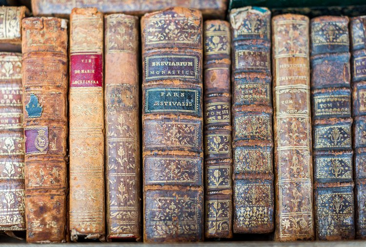 Antique Book Libraries